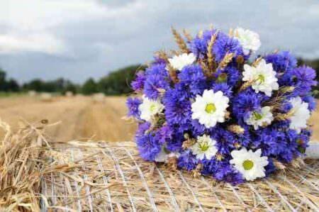 Цветы на тюке