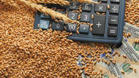 Калькулятор в пшенице