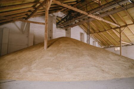 бесплатное хранение зерна